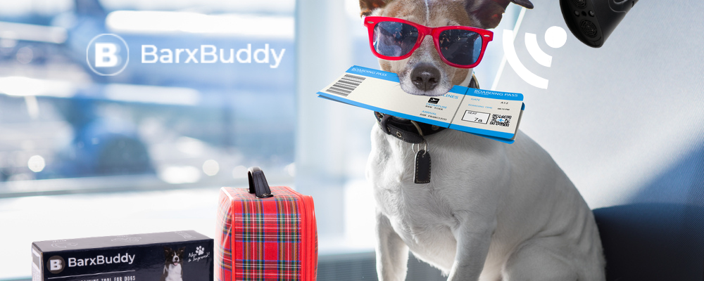 4 Reasons Why People Love Using BarxBuddy When Traveling With Their Dog